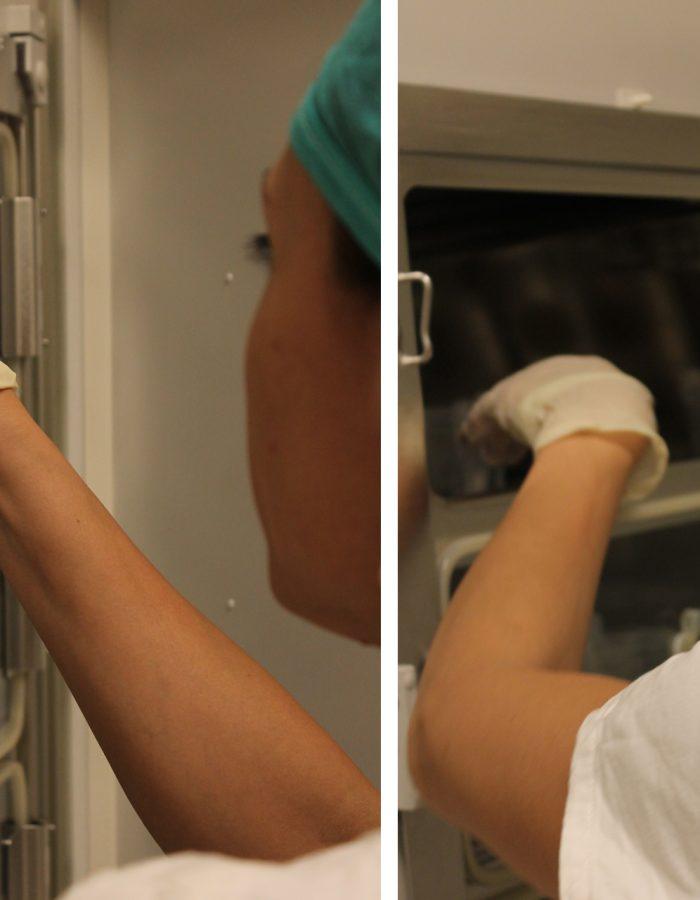 laboratorio embriologia chiara granato