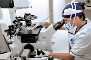 Embriologo clinico e PMA